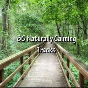 80 Naturally Calming Tracks | Musica para Dormir Dream House