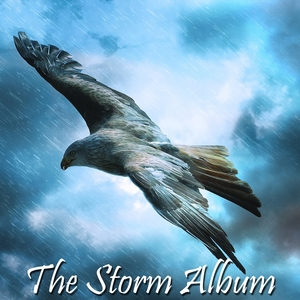The Storm Album | The Rain Library