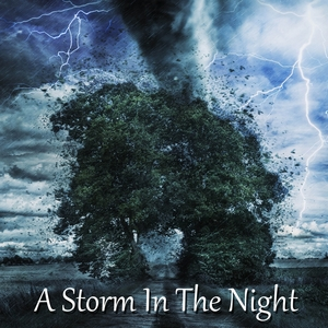 A Storm In The Night | Thunderstorms