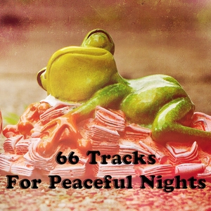 66 Tracks For Peaceful Nights | Musica para Dormir Dream House