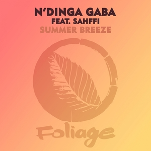 Summer Breeze | N'dinga Gaba