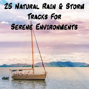 25 Natural Rain & Storm Tracks For Serene Environments | The Rain Library