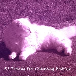 65 Tracks For Calming Babies | White Noise Baby Sleep