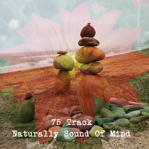 75 Track Naturally Sound Of Mind | Healing Sounds for Deep Sleep and Relaxation