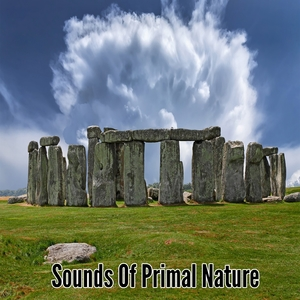 Sounds Of Primal Nature   Healing Sounds for Deep Sleep and Relaxation
