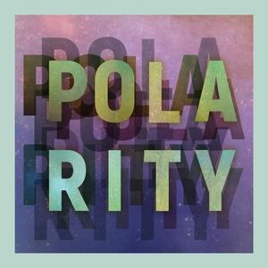 Polarity | Carvel'