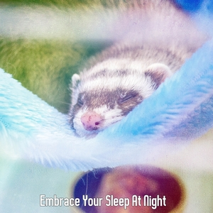 Embrace Your Sleep At Night | Musica para Dormir Dream House