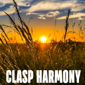 Clasp Harmony | White Noise Therapy