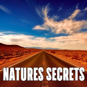 Natures Secrets | White Noise Therapy