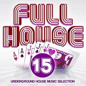 Full House, Vol. 15   Phunk Investigation