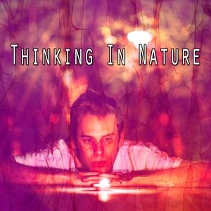 Thinking In Nature | White Noise Meditation