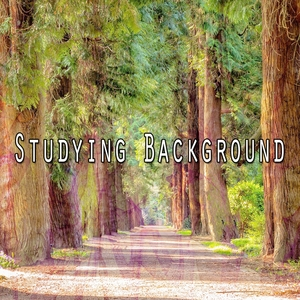 Studying Background | Classical Study Music