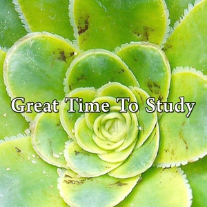 Great Time To Study | Music For Reading