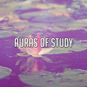 Auras Of Study | Brain Study Music Guys