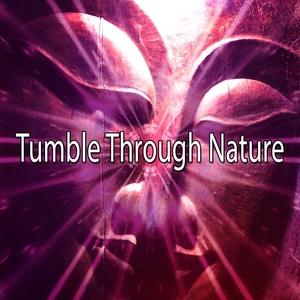 Tumble Through Nature | Forest Sounds