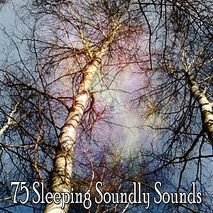 75 Sleeping Soundly Sounds | White Noise For Baby Sleep