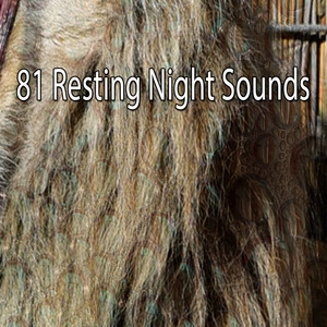 81 Resting Night Sounds | Spa Music Paradise