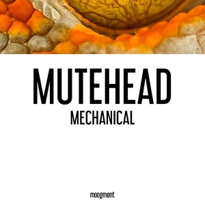 Mechanical | Mutehead