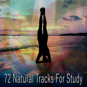 72 Natural Tracks For Study | Classical Study Music