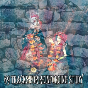 69 Tracks For Reinforcing Study | Brain Study Music Guys