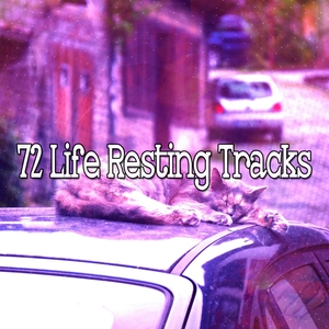 72 Life Resting Tracks | Musica para Dormir Dream House