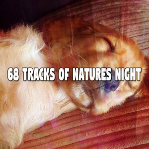 68 Tracks Of Natures Night | Musica para Dormir Dream House