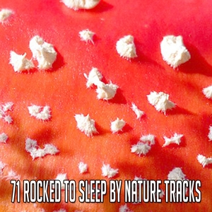 71 Rocked To Sleep By Nature Tracks | Rockabye Lullaby