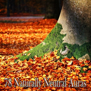 78 Naturally Neutral Auras | White Noise Therapy
