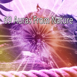 69 Auras From Nature | Sounds of Nature