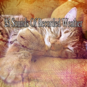25 Sounds Of Recorded Weather | The Rain Library