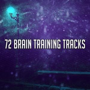 72 Brain Training Tracks | Classical Study Music