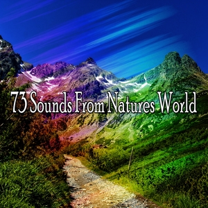 73 Sounds From Natures World | Forest Sounds