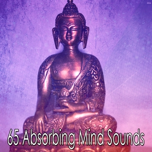 65 Absorbing Mind Sounds | White Noise Meditation