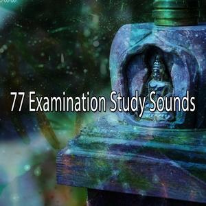 77 Examination Study Sounds | Exam Study Classical Music Orchestra