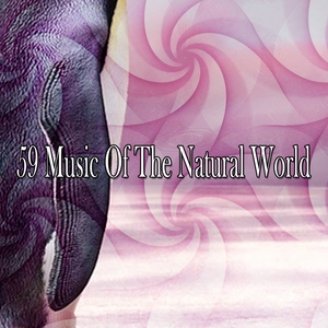 59 Music Of The Natural World | Musica para Dormir Dream House