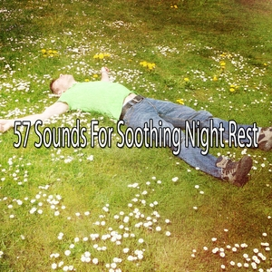 57 Sounds For Soothing Night Rest | White Noise Babies