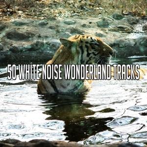50 White Noise Wonderland Tracks | White Noise Therapy