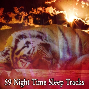 59 Night Time Sleep Tracks | Rockabye Lullaby
