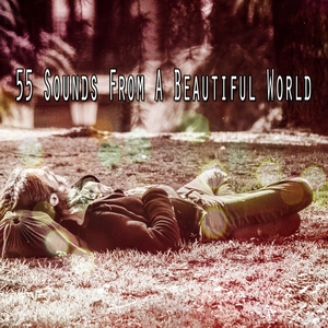 55 Sounds From A Beautiful World | Spa Music Paradise