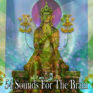 54 Sounds For The Brain | Brain Study Music Guys