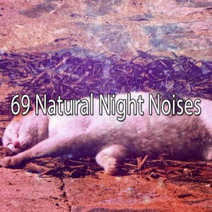 69 Natural Night Noises | White Noise For Baby Sleep