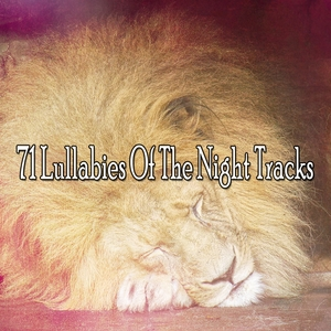 71 Lullabies Of The Night Tracks | Rockabye Lullaby