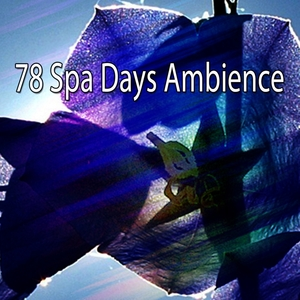 78 Spa Days Ambience | Spa Music Paradise