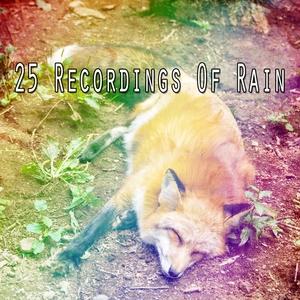 25 Recordings Of Rain | The Rain Library