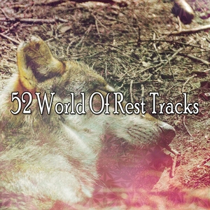 52 World Of Rest Tracks | Musica para Dormir Dream House