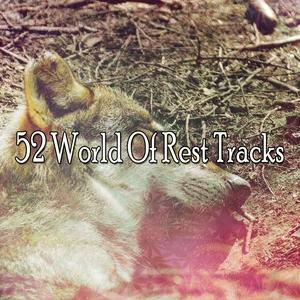 52 World Of Rest Tracks | Musica para Dormir Dream House