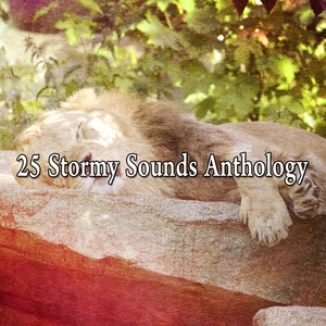 25 Stormy Sounds Anthology | The Rain Library