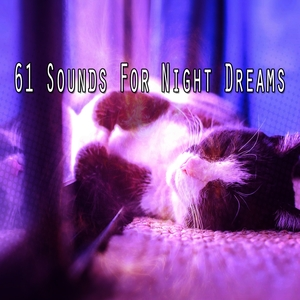 61 Sounds For Night Dreams | Sounds of Nature