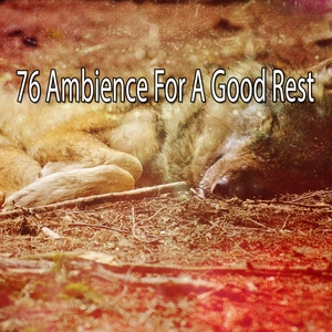 76 Ambience For A Good Rest | White Noise Babies