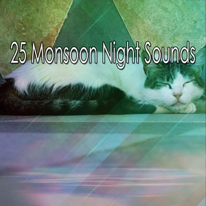 25 Monsoon Night Sounds | Thunderstorms